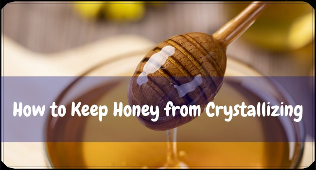 How to Keep Honey from Crystallizing