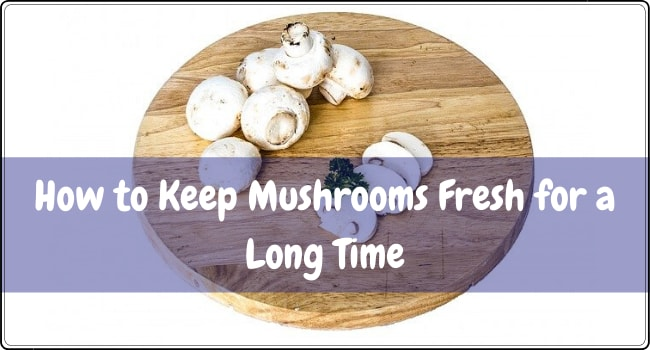 How to Keep Mushrooms Fresh for a Long Time