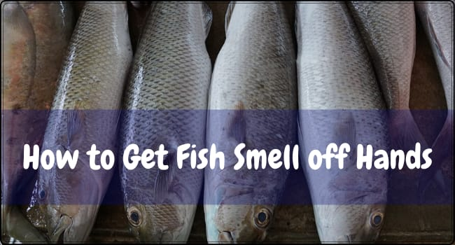 How to Get Fish Smell off Hands